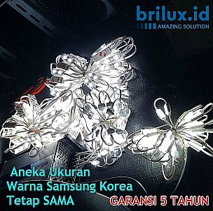LED Modul Samsung BRILUX 3 Mata SMD 2835 | IP68 Waterproof ( Korea ) | Trans Angle